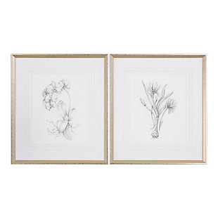 Uttermost Botanical Sketches Framed Prints Set of 2, , large