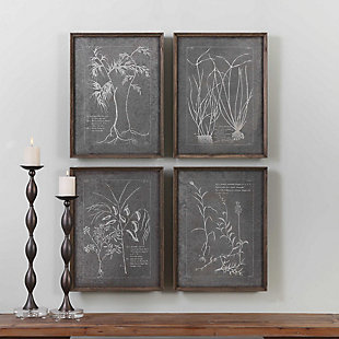 Uttermost Root Study Print Art Set of 4, , rollover