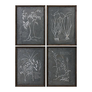 Uttermost Root Study Print Art Set of 4, , large