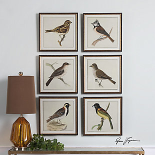 Uttermost Spring Soldiers Bird Prints, Set of 6, , rollover
