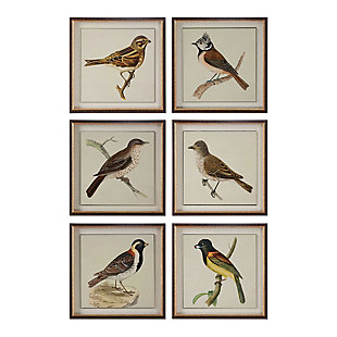 Uttermost Spring Soldiers Bird Prints, Set of 6, , large