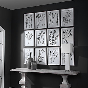 Uttermost Contemporary Botanicals Framed Prints, Set of 12, , rollover