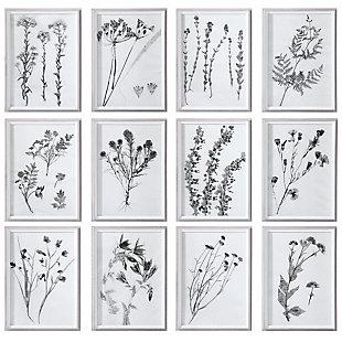 Uttermost Contemporary Botanicals Framed Prints, Set of 12, , large