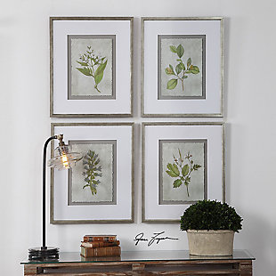 Uttermost Stem Study Framed Prints Set of 4, , rollover