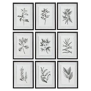 Uttermost Farmhouse Florals Framed Prints, Set of 9, , large