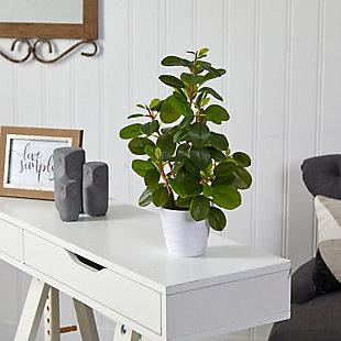 """16"""" Peperomia Artificial Plant in Decorative Planter, , rollover"""