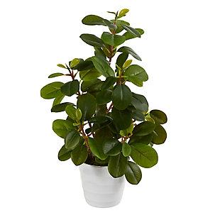 "16"" Peperomia Artificial Plant in Decorative Planter, , large"