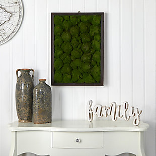 """17"""" x 24"""" Artificial Moss Hanging Frame, , rollover"""