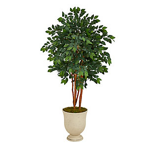 "55"" Sakaki Artificial Tree in Decorative Urn, , large"