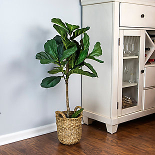 30-inch Fig in a Handle Basket, , rollover
