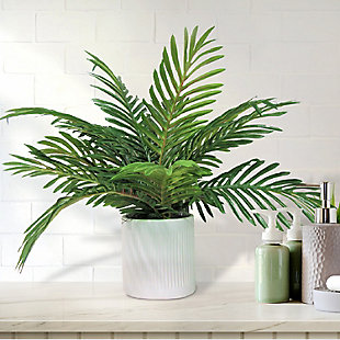 19-inch Phoenix Palm in Deco White Ceramic Pot, , rollover