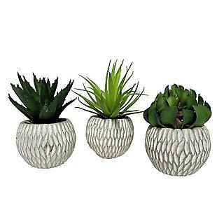 Set of 3 Succulents in Deco Concrete Pots, , large