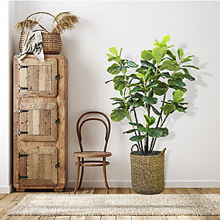 5.6-foot Fiddle Leaf Fig Tree, , rollover