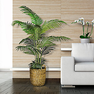 5-foot Areca Palm Tree in a basket, , rollover