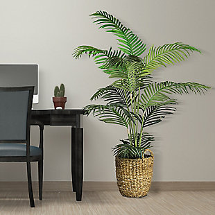 5-foot Areca Palm Tree in a basket, , large