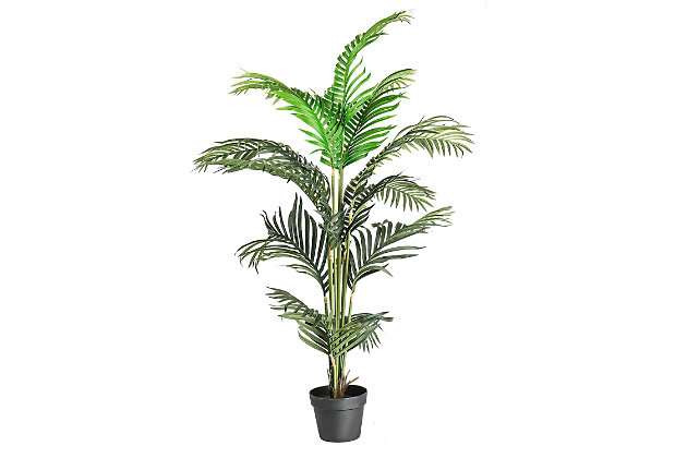 56-inch Palm Tree in a Pot, , large