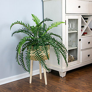 38-inch River Fern in Tri-Color Basket Stand, , rollover