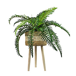 38-inch River Fern in Tri-Color Basket Stand, , large