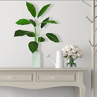 30-inch Rubber Plant in Crackle Cream Vase, , rollover