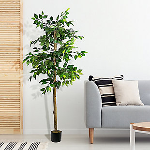 6-foot Ficus Tree in Pot, , rollover