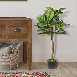 3-foot Fiddle Leaf Fig Tree in Pot, , rollover