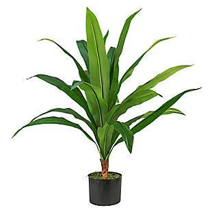 3-foot Dracaena in Pot, , large