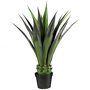 3-foot Agave in Pot, , large