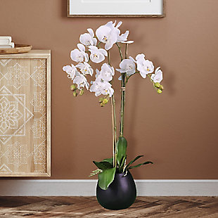 32-inch White Orchid in Black Pot, , rollover
