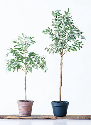 Potted Faux Olive Artificial Flower, , rollover