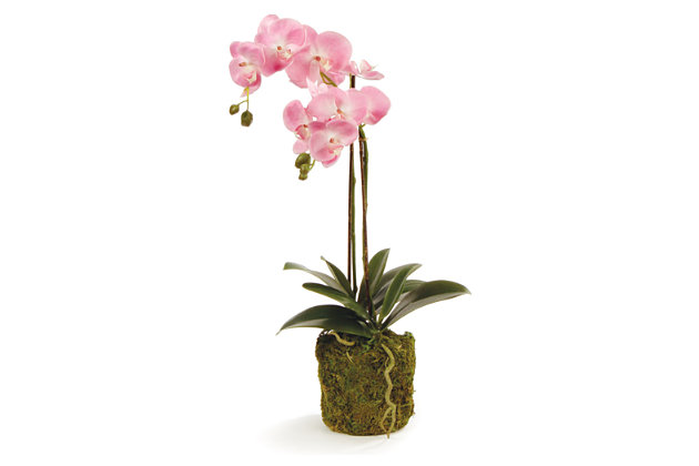 Home Accents CC 23'' Phalaenopsis Pink Drop-In, , large