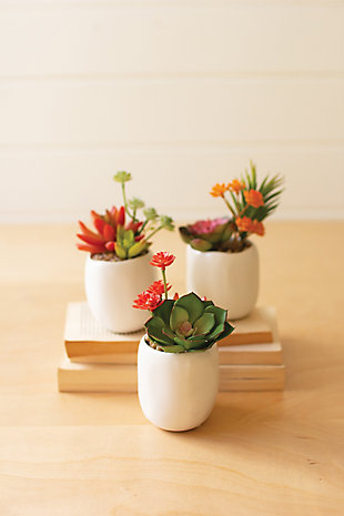 Set of Three Artificial Succulent Plants in a White Pot, , large