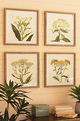 Kalalou Set of Four Framed Flower Prints Under Glass, , rollover