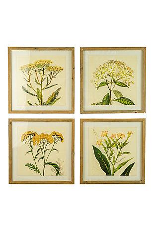 Kalalou Set of Four Framed Flower Prints Under Glass, , large