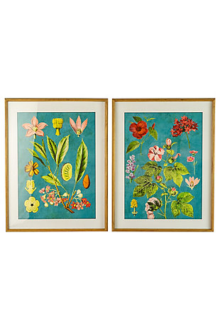 Kalalou Set of 2 Framed Flower Prints with Blue Background Under Glass, , large
