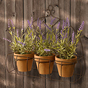 National Tree Company Potted Lavender Plants in Decorative Rack, , rollover