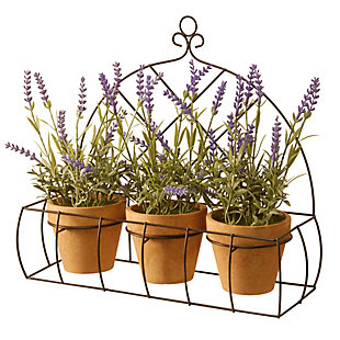 National Tree Company Potted Lavender Plants in Decorative Rack, , large