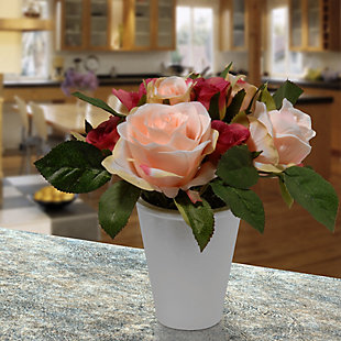 National Tree Company Potted Rose Flowers, , rollover