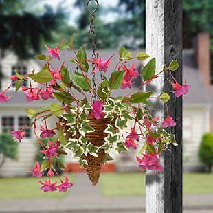 National Tree Company Fuchsia and Ivy Hanging Basket, , rollover