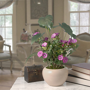National Tree Company Assorted Leaves Potted Plant, , rollover