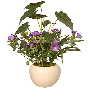 National Tree Company Assorted Leaves Potted Plant, , large