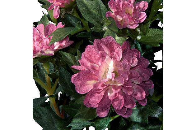 National Tree Company Potted Zinnia Flowers, , large