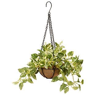 National Tree Company Pothos Plant Hanging Basket, , large