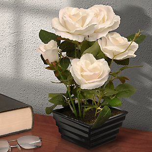 National Tree Company Potted White Rose Flowers, , rollover