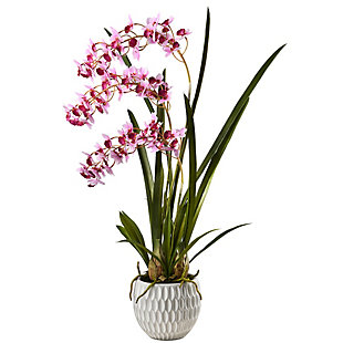 National Tree Company Potted Orchid Plant, , large