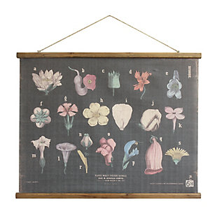 Creative Co-Op Scientific Botanicals Linen and Wood Scroll Wall Poster, , large
