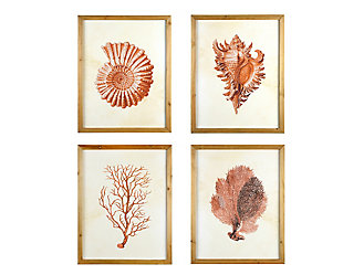 Creative Co-Op Wood Framed Wall Art with Red Shells and Coral (Set of 4 Designs), , large