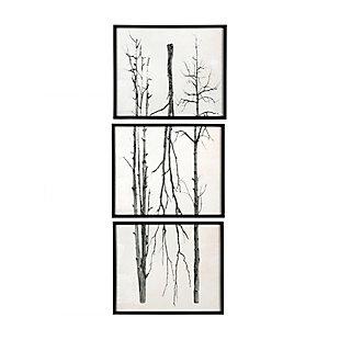 Creative Co-Op Wood Framed Branch Artwork, Black (Set of 3), , large