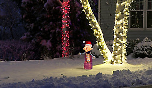 Rudolph 24 Inch Charlie in the Box Outdoor 3D LED Yard Decor, , rollover