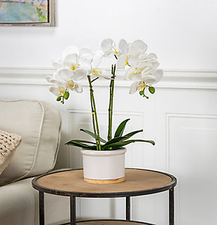 18-Inch Tall Real Touch Ultra-Realistic White Phalaenopsis Arrangement in Pot, , rollover