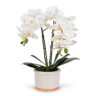18-Inch Tall Real Touch Ultra-Realistic White Phalaenopsis Arrangement in Pot, , large